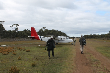 Airstrip at Bruny Island (Dominic Couzens)
