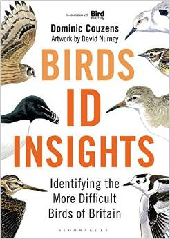 Birds ID Insights